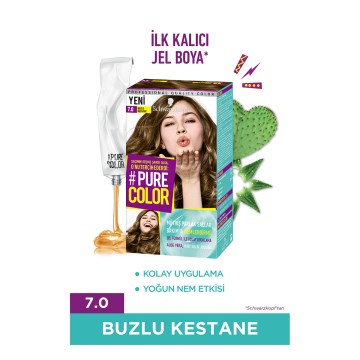 Pure Color - Buzlu Kestane 7.0